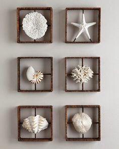 decorar-conchas-quadros