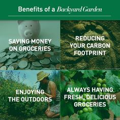 There are so many benefits of growing your own food, here are some of our favorites