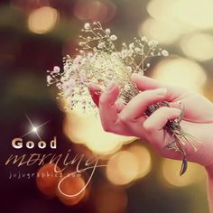 Lovely good morning / jujugraphics . Com