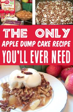 Apple Dump Cake with Pie Filling or Fresh Apples!  This decadent dessert loaded with sweet pecans and cozy Fall spices will have you dreaming of crisp air and chilly Autumn nights!  Go grab the recipe and give it a try this week! Apple Dump Cakes, Dump Cake Recipes, Fruit Recipes, Apple Recipes, Fall Recipes, Dinner Recipes, Thanksgiving Desserts Easy, Fall Desserts, Delicious Desserts