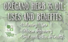 Oregano is a wonderful herb with many benefits and healing properties. Try these culinary and healing uses!