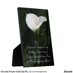Serenity Prayer Calla Lily Photo Plaque