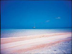 Pink sand beach - Tikehau, Tahiti