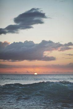 aloha   Flickr - Photo Sharing!