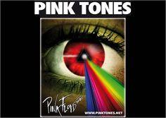 The Pink Tones @ Auditorio Municipal - Ourense musica concierto concerto tributo Pink Floyd