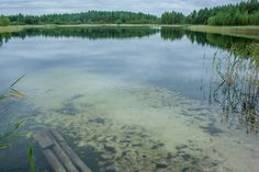 Озеро Травное