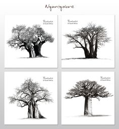 These coasters feature breath-taking photographs of Africa's majestic Baobab trees. South African Homes, Baobab Tree, African Home Decor, Coaster Set, Arts And Crafts, Photographs, Delivery, Trees, Beautiful