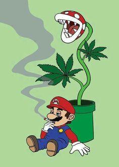 Mario Bross high marihuana plant
