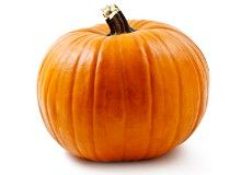 40 Weeks Pregnant: Small Pumpkin -- Size: 20.16 inches (51.2 cm) Weight: 7.63 pounds (3462 grams) -- With skull bones that haven't fused, your baby is coming equipped with the skills to make it through labor...