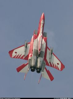 F-15 J w/ special livery for  50th Anniversary of JASDF.