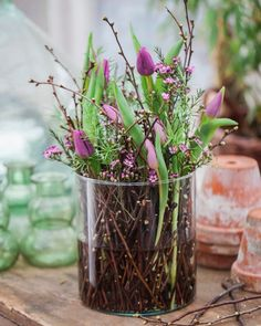pot with branches, moss and a large amaryllis bulb - Claudia Luwi - . pot with branches, moss and a large amaryllis bulb - Claudia Luwi - . circular test tube center piece vase by marquis & dawe Garden Care, When To Plant Tulips, Moss Wreath, Amaryllis Bulbs, Deco Nature, Deco Floral, Garden Types, Summer Flowers, Ikebana