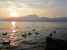 Een zonsondergang aan het Gardameer is zo mooi!  http://www.gardafriends.com/