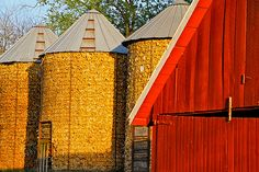 Corn Harvest Grain Storage, Future Farms, Country Lifestyle, Old Tractors, Down On The Farm, Vintage Farm, Old Farm, Farm Yard, Farm Life