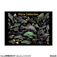 Plecoの仲間のポスター,No.01 ポスター