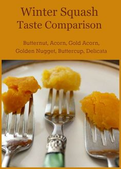 Which type of winter squash is the sweetest Which one is ideal for vegetable casseroles Check out this winter squash taste comparison! #realfood