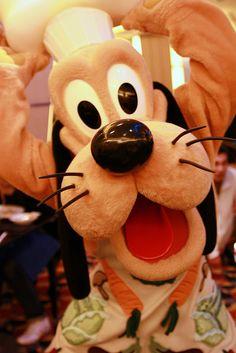 Pluto... I love him!