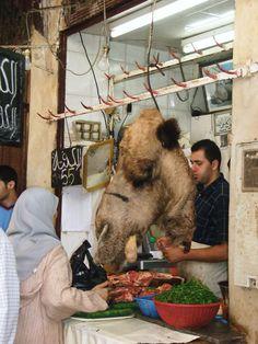 Fez, Morocco, Camel butcher | #morocco http://www.marocdesertexperience.com