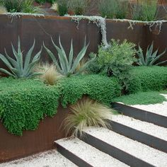 Corten Steel Planter Design, Pictures, Remodel, Decor and Ideas