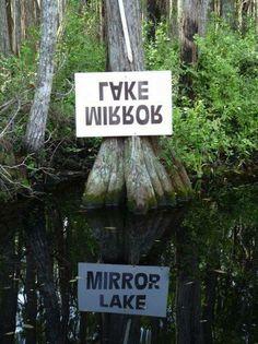 — at Okefenokee Swamp Park, Georgia