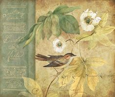 "Sanctuary Nature ""Bird Green Leaves"", by Susan Winget All Birds, Decoupage Paper, Vintage Tags, Christmas Art, Vintage Flowers, Art World, Retro, Altered Art, Art Pictures"