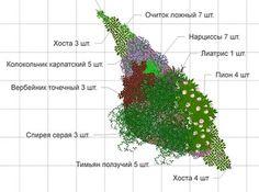 цветники из многолетников своими руками схемы: 17 тыс изображений найдено в Яндекс.Картинках
