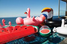 NEW SUNNYLIFE INFLATABLE MOBY DICK Pool Beach Swimming Toy Blowup Float Floatie
