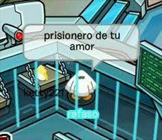 Club pingui - Penguin Funny - Funny Penguin meme - - Club pingui The post Club pingui appeared first on Gag Dad. Cute Memes, Funny Memes, Club Penguin Memes, Funny Penguin, Current Mood Meme, Meme Stickers, Mood Pics, Spanish Memes, Quality Memes