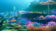 buscando a nemo corales - Buscar con Google Underwater Painting, Underwater World, Meer Illustration, Cousins, Under The Ocean, Church Nursery, Environment Concept Art, Disney Wallpaper, Ocean Life