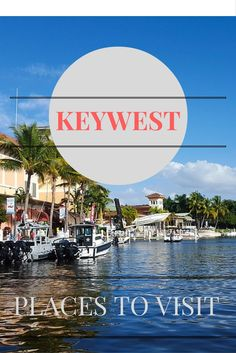 Down in Key Largo, or better known as Key West, or the Florida Keys you will enjoy a tropical experience. Key West is a favorite vacations spot, since it reminds visitors of the beautiful Caribbean areas. Travel Collage, Florida Keys, Key West, Vacation Spots, Caribbean, Places To Visit, Explore, City, Collages