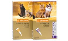 The most complete all in one parasite protection! Flea And Tick, Ticks, Fleas, Products, Gadget