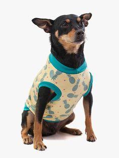 A Camiseta para Cachorro  - Tropicália Pineapple da Cacau Dress Pet é uma roupa com estampa tropical de abacaxis que vai deixar seu pet citricamente refrescado e adocicado!