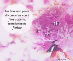 Quote by Anonimo #quotes #quote #aforismi #nature #natura #flowers #citazioni #naturequotes #Anonimo