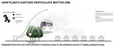 Bu şehir astım, alerji ve kalp rahatsızlıklarına karşı doğayı değerlendiriyor – Yeşilist    Geçtiğimiz ay yayınlanan bir rapor, çevre kirliliğinin dünyadaki her 6 ölümden birinin sorumlusu olduğunu ortaya çıkarmış, hava kirliliğinin de bunda en büyük paya sahip olduğunu açıklamıştı. Bu kirliliğin sonucu ortaya çıkan sis ve havadaki partiklüller, alerji, astım ve kalp rahatsızlıklarına... http://whatishesaying.com/bu-sehir-astim-ale