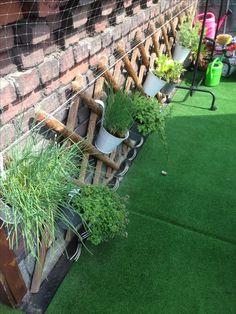 Oase Terrassen pin von neuer_zechenstein jens auf unser kleiner terrassen-garten