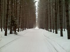 Wisconsin.. Snowmobile Trails