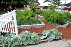 When designing your vegetable garden design, you should look at what materials you will use to make outdoor paths, how wide you will make theses paths and that you will position them.