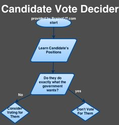 Should I Vote for This Person Flowchart