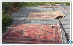 9 Steps Oriental Rug and Carpet Cleaning Process
