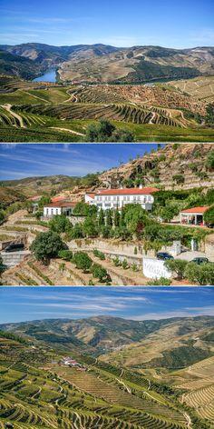 A stunning drive through Portugal's wine region