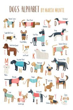 Dogs alphabet for dog lovers, Printable Dog alphabet poster, ABC dogs breeds, A to Z dogs alphabet, printable dogs wall art. Adrien Y Marinette, Young Animal, Best Dog Training, Best Dog Food, Cute Animals, Baby Animals, Dog Illustration, Legolas, Dog Accessories
