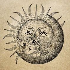 365cat.art【月と太陽と猫】#illust #design #猫 #cat #イラスト #猫デザイン #猫イラスト #細密画 #猫の絵 #sun #moon #illustration Illustration Art, Photo And Video, Cats, Instagram, Design, Gatos, Cat, Kitty