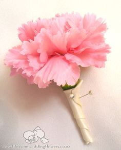 Posts about carnations written by emilysblossoms Carnation Boutonniere, Diy Boutonniere, Red Wedding, Wedding Flowers, Wedding Day, Winter Bouquet, Pink Carnations, Flower Corsage, Bridesmaid Bouquet