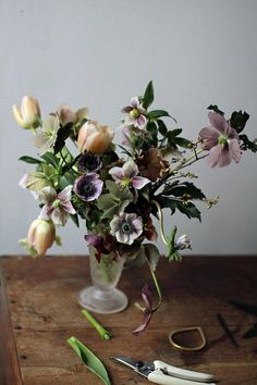 hellebore_anemone2 by Sarah Ryhanen, via Flickr