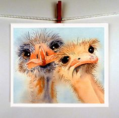 Ostrich Bird Paintings Prints Watercolors  Nature art by LaBerge, $20.00