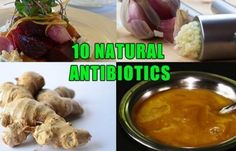 over-10-natural-antibiotics-that-fight-infection-and-pharmaceutical-companies-do-not-want-you-to-know