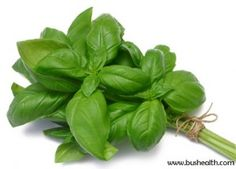5 Benefits Of Basil Leaves