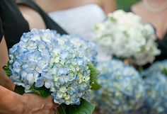 Blue Hydrangea Wedding Bouquets