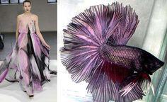 Fish-Inspired Fashion - Siamese Fighting Fish Dresses at Rodarte (GALLERY)