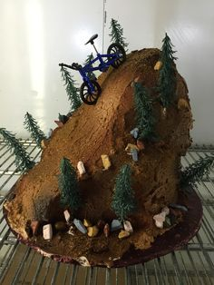 Mountain Bike cakes at DelRio Cakes in Temecula www. Bike Birthday Parties, 9th Birthday, Birthday Cakes, Birthday Ideas, Mountain Bike Cake, Mountain Biking, Dirt Bike Cakes, Happy Mother's Day Funny, Bicycle Cake