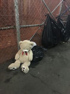 Poor Innocent sad little bear